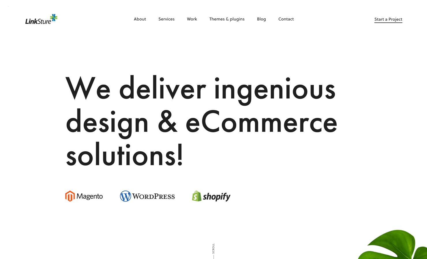 LinkSture eCommerce Agency